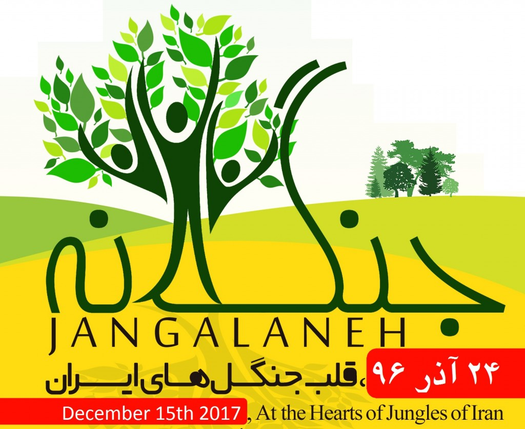 site_jangalane_96